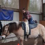 Vertrauen und Selbstvertrauen lernen mit dem Pferd