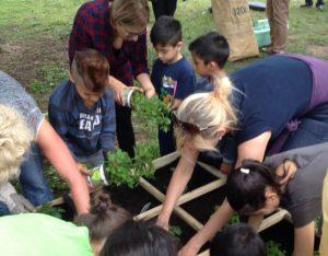 Helfer der Paria-Stiftung bepflanzen mit Flüchtlingskindern ein Hochbeet