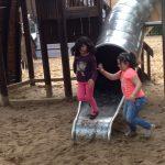 Spielplatz-Zeit für unsere Paria-Kinder im Zoo