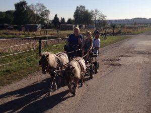 Inklusive Jugendgruppen bei Kutschfahrten auf dem Reiterhof