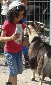 Tiere füttern für die Paria Pänz im Tierpark Reuschenberg.