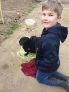 Streicheleinheiten für den Hofhund