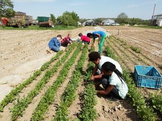 Paria Stiftung mit Gruppenkindern auf dem Lammertzhof
