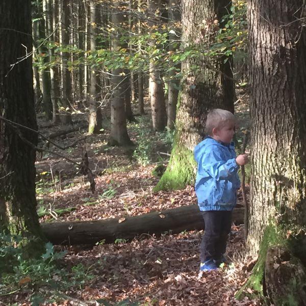 Paria-Kids werden zu Waldjägern im Paria-Herbstcamp