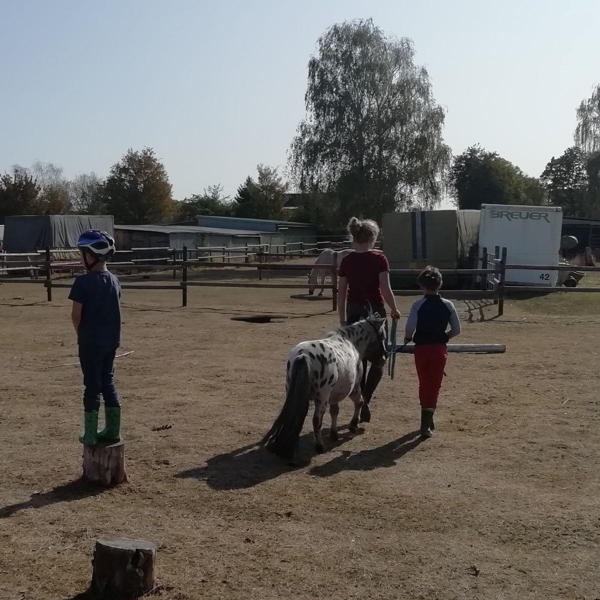 Die Paria Kids sind mit den Ponys in Langel unterwegs.